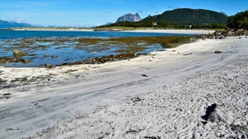 Fjære naturreservat på Kjerringøy