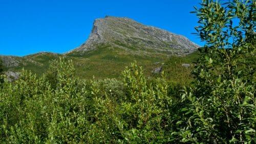 Låter på Kjerringøy