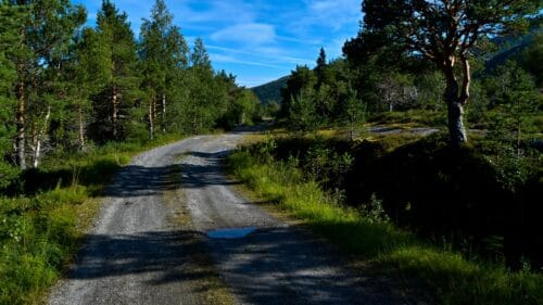 Langs Sørvassveien ved Sørvatnet